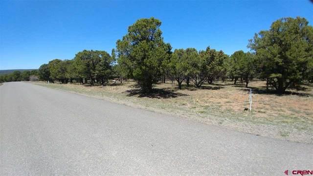 611 Pine Drive, Ridgway, CO 81432 (MLS #769256) :: The Dawn Howe Group | Keller Williams Colorado West Realty
