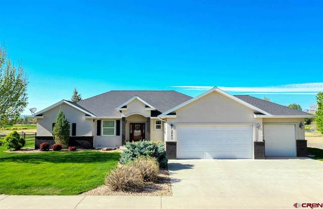 3771 Grand Mesa Drive, Montrose, CO 81403 (MLS #769261) :: The Dawn Howe Group | Keller Williams Colorado West Realty