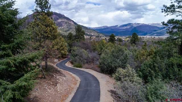 141 & 179 Tripp Creek Road, Durango, CO 81301 (MLS #769289) :: Durango Mountain Realty