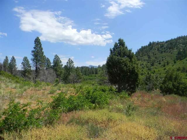 X Cr 46 Road, Mancos, CO 81328 (MLS #769326) :: The Howe Group | Keller Williams Colorado West Realty