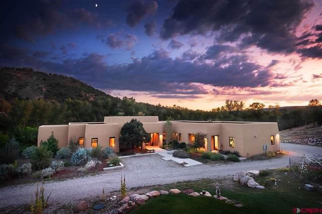 1084 Jack Rabbit Trail, Durango, CO 81303 (MLS #769574) :: Durango Mountain Realty