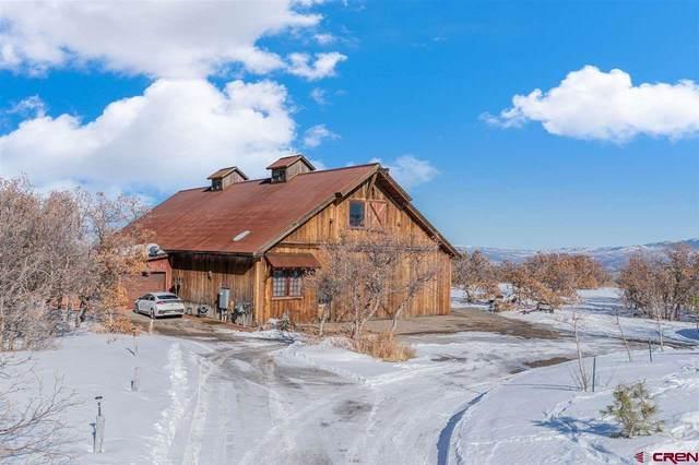 77 Birdsong Lane, Montrose, CO 81403 (MLS #769599) :: The Dawn Howe Group | Keller Williams Colorado West Realty