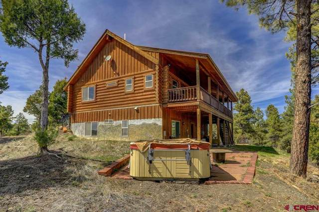 1070 Shenandoah Drive, Pagosa Springs, CO 81147 (MLS #769664) :: The Dawn Howe Group | Keller Williams Colorado West Realty