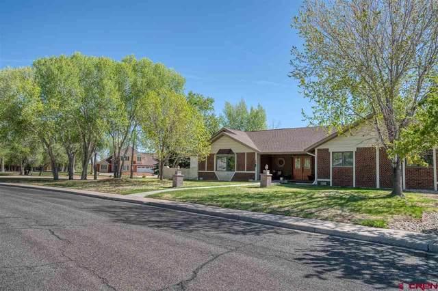 224 Riverwood, Alamosa, CO 81101 (MLS #769682) :: The Dawn Howe Group | Keller Williams Colorado West Realty