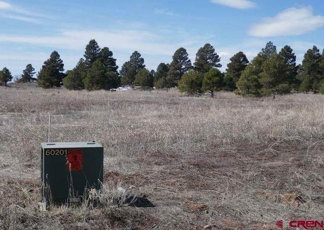 326 Lake Street, Pagosa Springs, CO 81147 (MLS #769701) :: The Dawn Howe Group | Keller Williams Colorado West Realty