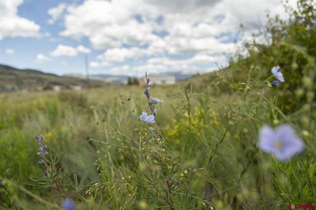 2050 Middle Creek Road, Creede, CO 81130 (MLS #769761) :: The Dawn Howe Group | Keller Williams Colorado West Realty
