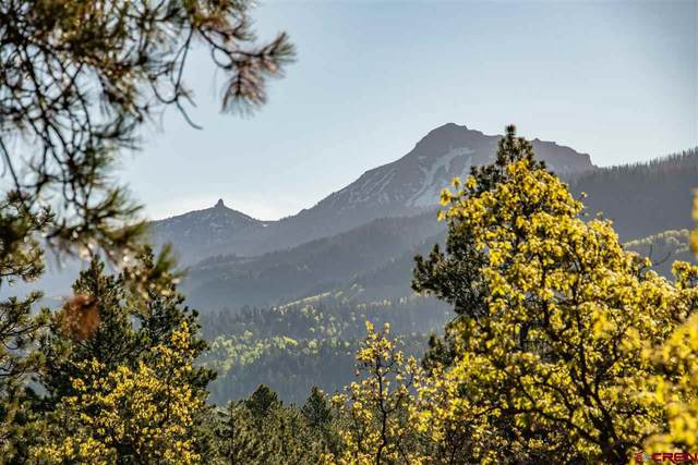 Tract 3 Needles View Place, Pagosa Springs, CO 81147 (MLS #769767) :: The Dawn Howe Group | Keller Williams Colorado West Realty
