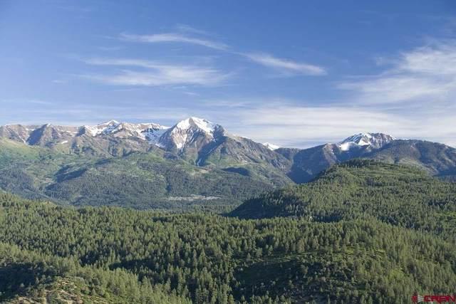 529 Castle Ridge Drive, Durango, CO 81303 (MLS #769852) :: Durango Mountain Realty