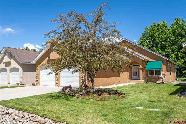 19 Crazy Horse Drive, Durango, CO 81301 (MLS #769860) :: The Dawn Howe Group   Keller Williams Colorado West Realty