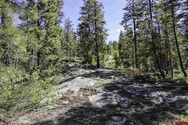 2083 Lake Purgatory Drive, Durango, CO 81301 (MLS #769865) :: The Dawn Howe Group   Keller Williams Colorado West Realty