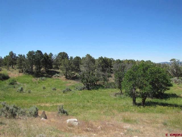 353 Mesa Linda Drive, Durango, CO 81303 (MLS #769890) :: The Dawn Howe Group   Keller Williams Colorado West Realty