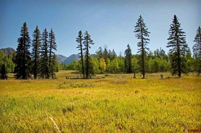 33 Meadow Lane, Durango, CO 81301 (MLS #769898) :: The Dawn Howe Group | Keller Williams Colorado West Realty