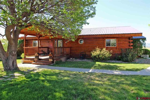 25780 Road N, Cortez, CO 81321 (MLS #769922) :: The Dawn Howe Group | Keller Williams Colorado West Realty