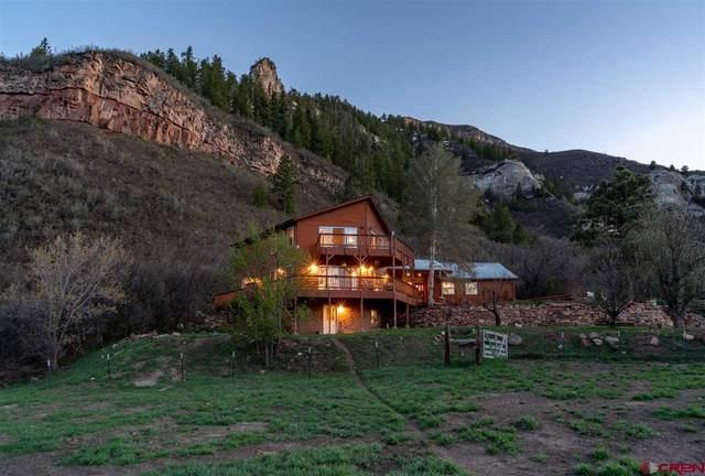163 Crystal Lane, Durango, CO 81301 (MLS #769927) :: The Dawn Howe Group   Keller Williams Colorado West Realty