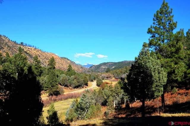 5136 Road 46, Mancos, CO 81328 (MLS #769949) :: The Dawn Howe Group | Keller Williams Colorado West Realty