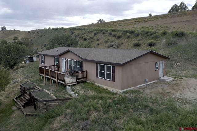 696 Camino Iglesia, Durango, CO 81303 (MLS #769980) :: The Dawn Howe Group | Keller Williams Colorado West Realty