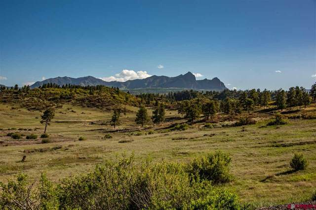141 Spring Creek Circle, Chromo, CO 81128 (MLS #770015) :: The Dawn Howe Group   Keller Williams Colorado West Realty
