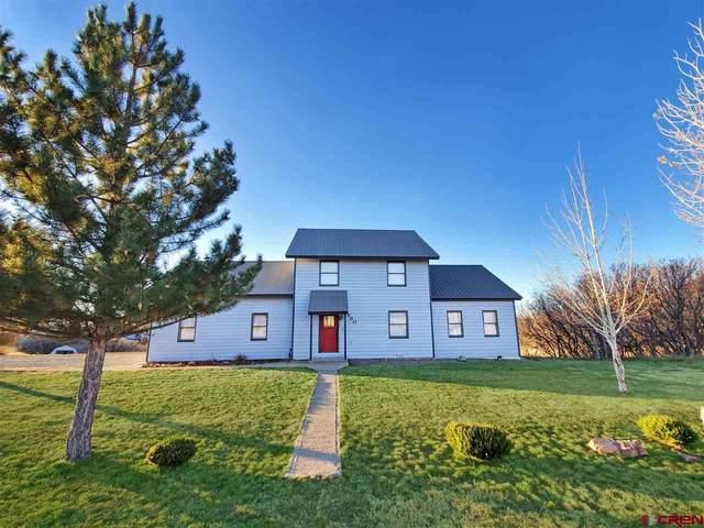 590 Wilmer Drive, Bayfield, CO 81122 (MLS #770045) :: The Dawn Howe Group | Keller Williams Colorado West Realty