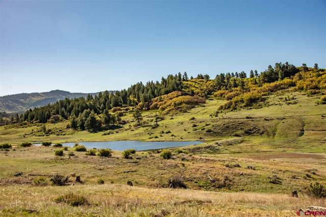 265 Spring Creek Circle, Chromo, CO 81128 (MLS #770056) :: The Dawn Howe Group   Keller Williams Colorado West Realty