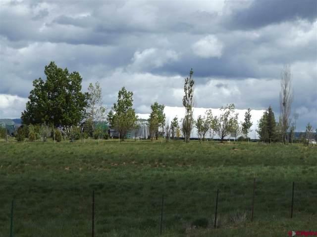 24748 Highway 491, Pleasant View, CO 81331 (MLS #770064) :: The Dawn Howe Group | Keller Williams Colorado West Realty