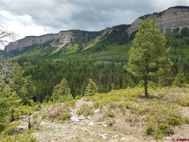367 Two Dogs Trail, Durango, CO 81301 (MLS #770067) :: Durango Mountain Realty