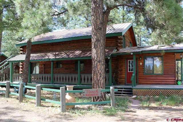 15248 Road 35, Mancos, CO 81328 (MLS #770069) :: The Dawn Howe Group | Keller Williams Colorado West Realty