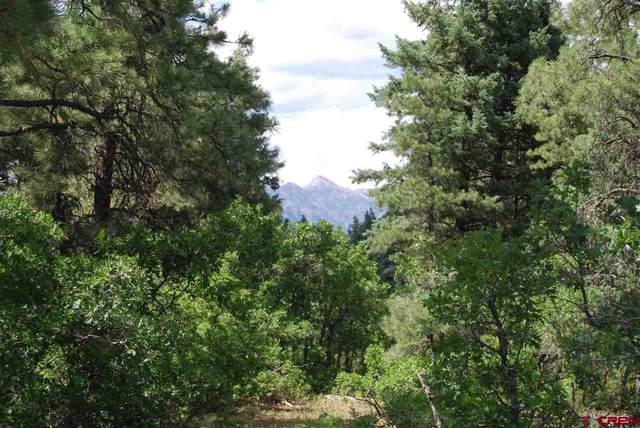 1085 Oren Road, Pagosa Springs, CO 81147 (MLS #770102) :: The Dawn Howe Group   Keller Williams Colorado West Realty