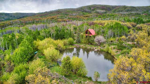 Lot 1 and 15 2225 Road, Cedaredge, CO 81413 (MLS #770201) :: The Dawn Howe Group | Keller Williams Colorado West Realty