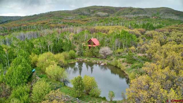 Lot 1 2525 Road, Cedaredge, CO 81413 (MLS #770202) :: The Dawn Howe Group | Keller Williams Colorado West Realty