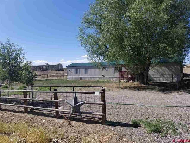 62301 David Road, Olathe, CO 81425 (MLS #770280) :: The Dawn Howe Group | Keller Williams Colorado West Realty