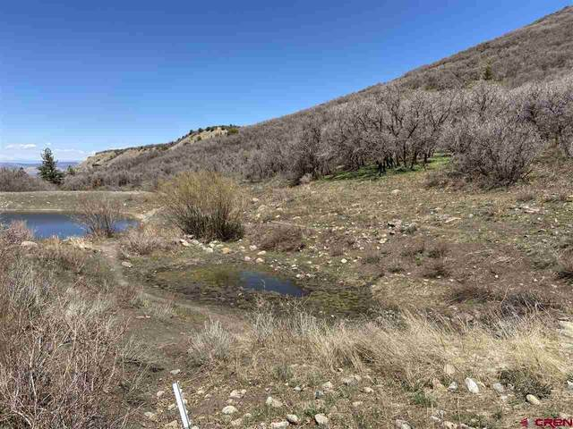 Lot 65 Glades Ranch Phase 3, Dolores, CO 81323 (MLS #770298) :: The Dawn Howe Group | Keller Williams Colorado West Realty