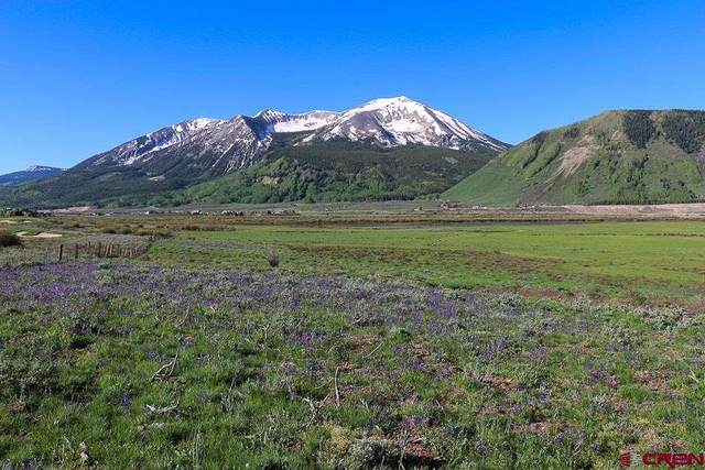 1099 Mccormick Ranch Road, Crested Butte, CO 81224 (MLS #770316) :: The Dawn Howe Group | Keller Williams Colorado West Realty