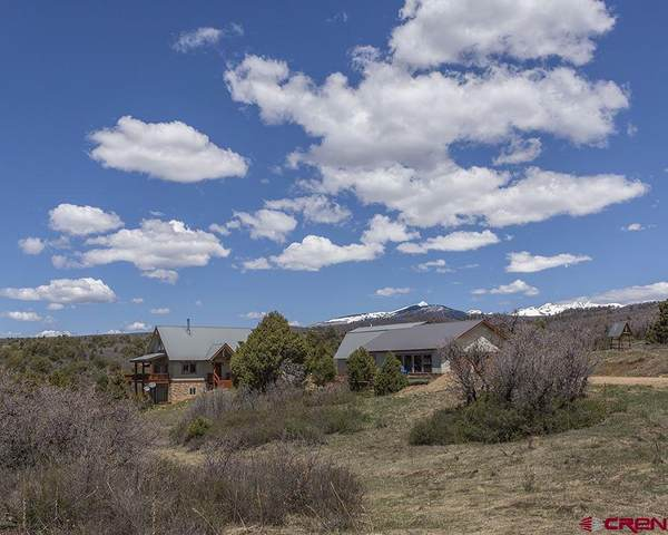 1405 Cougar Way, Hesperus, CO 81326 (MLS #770335) :: Durango Mountain Realty