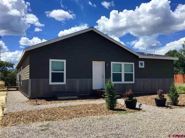 589 Hwy 172, Durango, CO 81303 (MLS #770437) :: Durango Mountain Realty