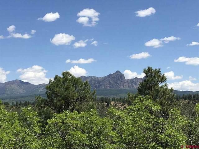 "701 Henryãƒâ¢Ã'Â'¬Ã'Â""¢S Lake Road, Pagosa Springs, CO 81147 (MLS #770454) :: The Dawn Howe Group   Keller Williams Colorado West Realty"