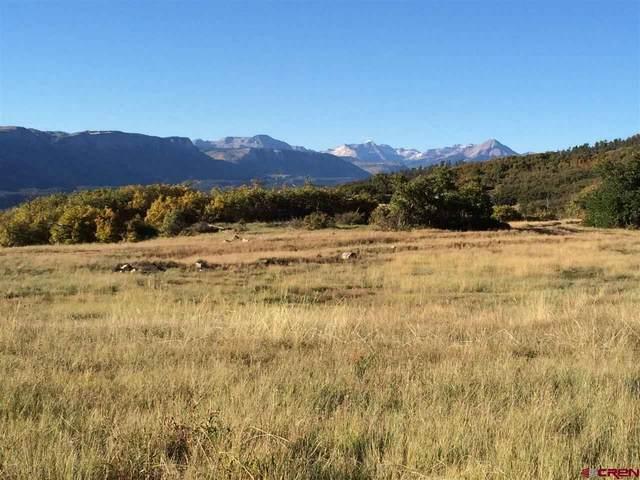 283 Thunder Mountain, Durango, CO 81301 (MLS #770526) :: Durango Mountain Realty
