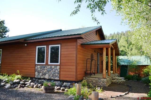 93 Monkshood, Pagosa Springs, CO 81147 (MLS #770589) :: The Dawn Howe Group | Keller Williams Colorado West Realty