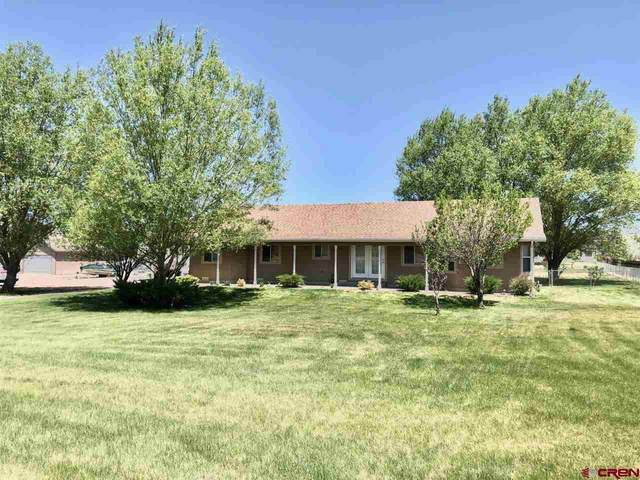 68721 Overland Drive, Montrose, CO 81401 (MLS #770660) :: The Dawn Howe Group | Keller Williams Colorado West Realty