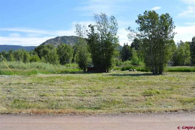 210 Ludwig Drive, Bayfield, CO 81122 (MLS #770701) :: The Dawn Howe Group | Keller Williams Colorado West Realty