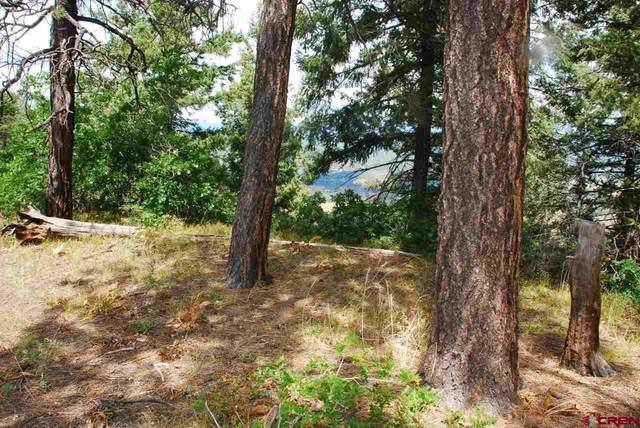 591 Splendor Drive, Pagosa Springs, CO 81147 (MLS #770823) :: The Dawn Howe Group | Keller Williams Colorado West Realty
