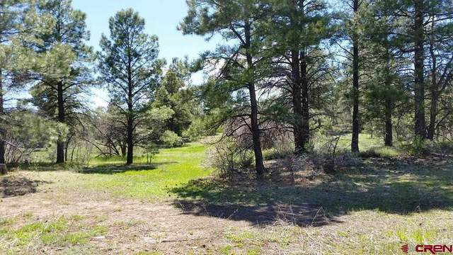 72 High Drive, Pagosa Springs, CO 81147 (MLS #770933) :: The Dawn Howe Group | Keller Williams Colorado West Realty