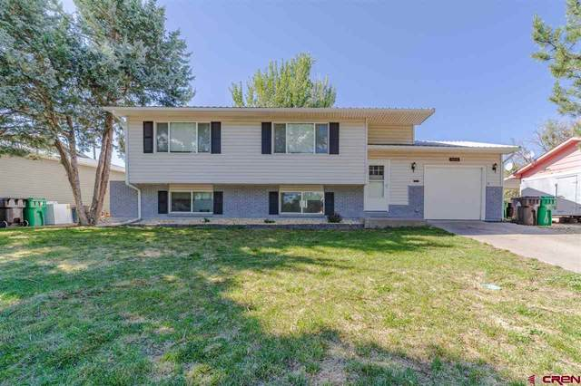 113 Spruce Drive, Montrose, CO 81401 (MLS #770963) :: The Dawn Howe Group   Keller Williams Colorado West Realty