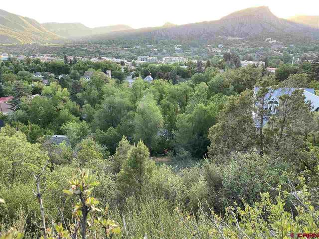 1164 E 5th Avenue, Durango, CO 81301 (MLS #770977) :: Durango Mountain Realty