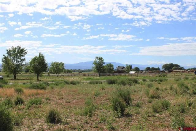 TBD (Lot 7) Mancos Lane, Montrose, CO 81403 (MLS #771140) :: The Dawn Howe Group   Keller Williams Colorado West Realty