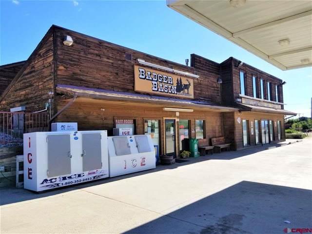 12551 Highway 24 Highway, Hartsel, CO 80449 (MLS #771142) :: The Dawn Howe Group | Keller Williams Colorado West Realty