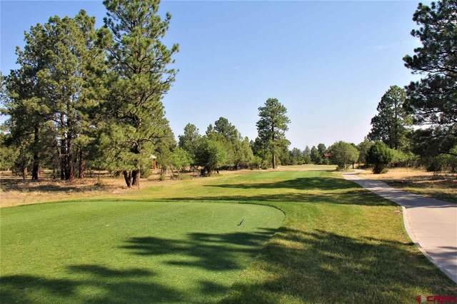 883 Marmot Drive, Ridgway, CO 81432 (MLS #771188) :: The Dawn Howe Group | Keller Williams Colorado West Realty