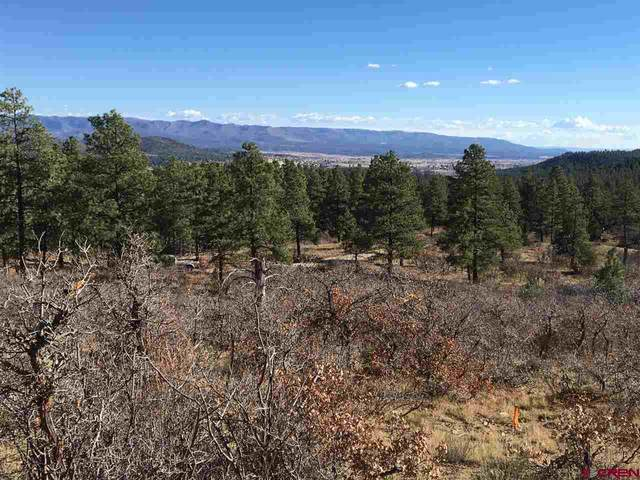 1679 Bald Eagle, Bayfield, CO 81122 (MLS #771222) :: The Dawn Howe Group | Keller Williams Colorado West Realty