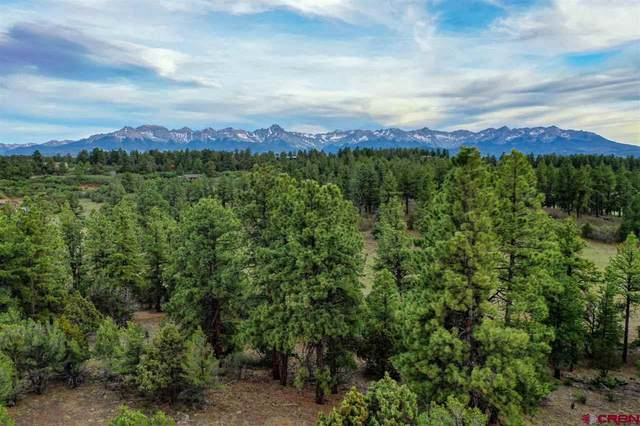 52 White Tail Lane, Ridgway, CO 81432 (MLS #771236) :: The Dawn Howe Group | Keller Williams Colorado West Realty