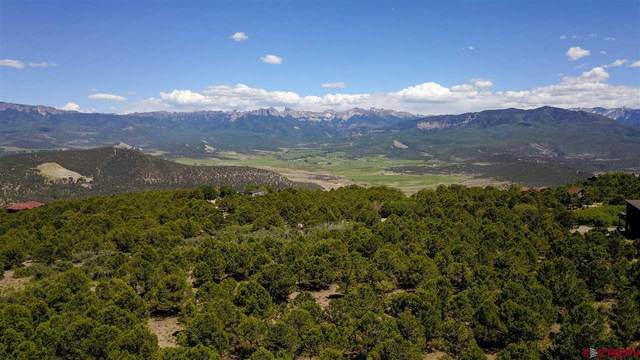 TBD Pine Drive, Ridgway, CO 81432 (MLS #771280) :: The Dawn Howe Group | Keller Williams Colorado West Realty