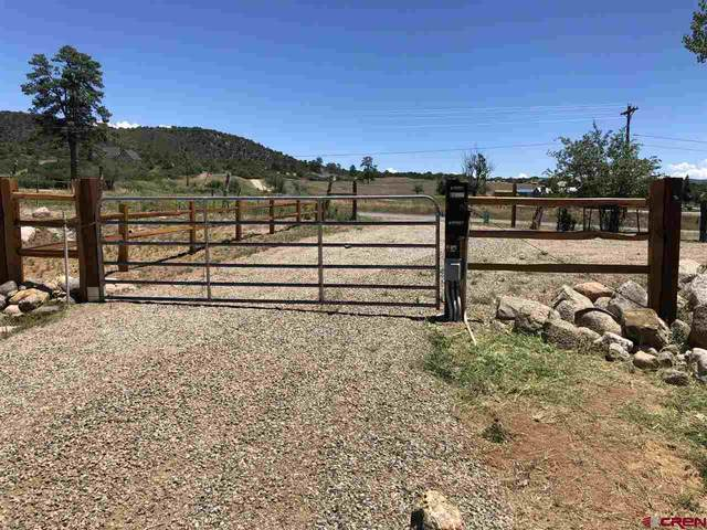 1393 County Road 501, Bayfield, CO 81122 (MLS #771337) :: The Dawn Howe Group   Keller Williams Colorado West Realty